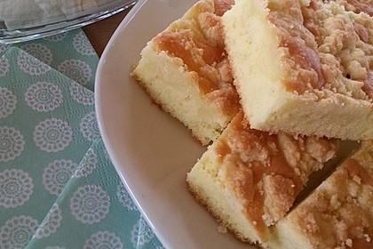 Bester Streuselkuchen der Welt 1