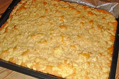 Bester Streuselkuchen der Welt 13