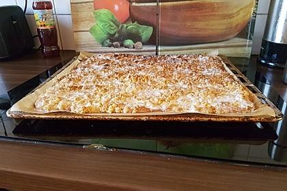 Bester Streuselkuchen der Welt 17