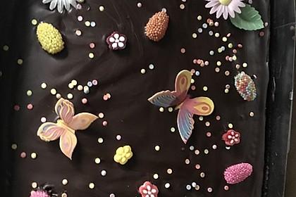 Kakao - Buttermilch - Blechkuchen mit Früchten 2
