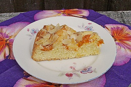 Aprikosen - Amarettini - Kuchen