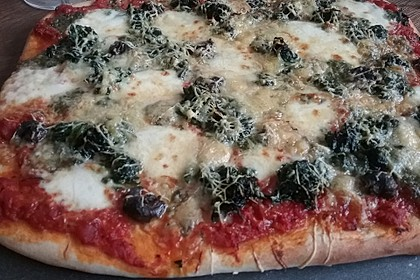 Pizzateig 153