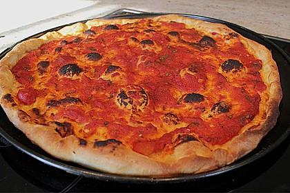 Pizzateig 118