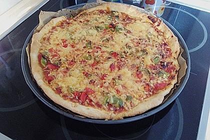 Pizzateig 113
