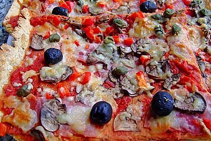 Pizzateig 151
