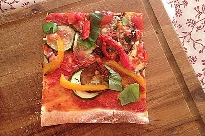 Pizzateig 176
