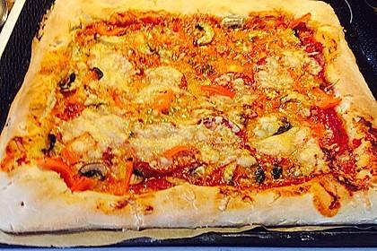 Pizzateig 170
