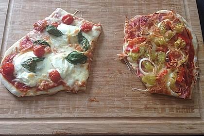 Pizzateig 141