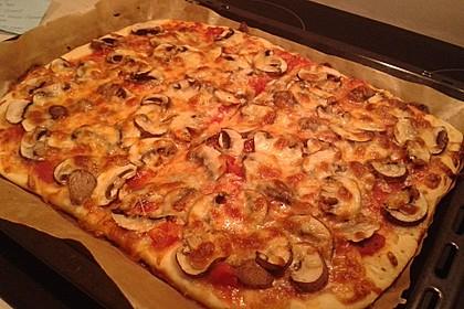 Pizzateig 107