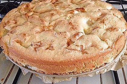 Apfelkuchen 14