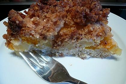Apfel-Mandarinen-Kuchen 4