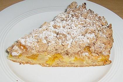 Apfel-Mandarinen-Kuchen 10