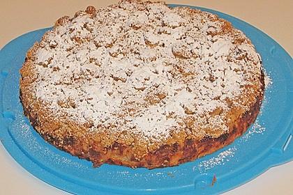 Apfel-Mandarinen-Kuchen 12