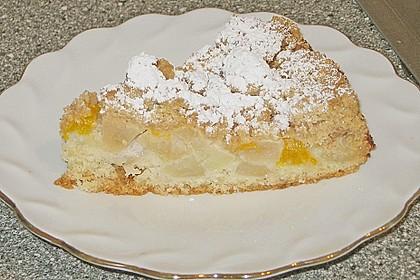 Apfel-Mandarinen-Kuchen 7