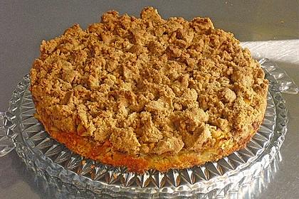 Apfel-Mandarinen-Kuchen 6
