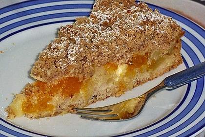 Apfel-Mandarinen-Kuchen 11