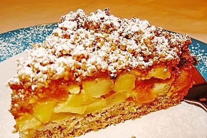 Apfel-Mandarinen-Kuchen 2