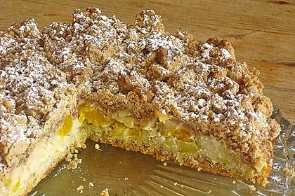 Apfel-Mandarinen-Kuchen 5