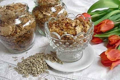 Müsli - Mischung gebacken