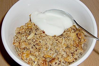 Müsli - Mischung gebacken 5