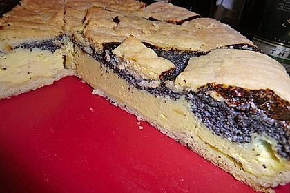 Mohn-Quark-Kuchen 7