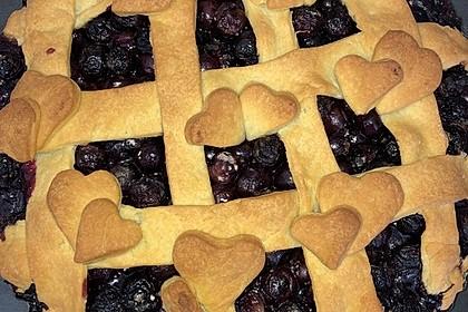 Best Blueberry Pie 23
