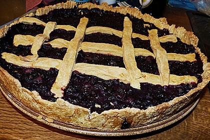 Best Blueberry Pie 28
