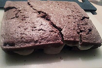 Veganer Biskuit - Grundrezept 18