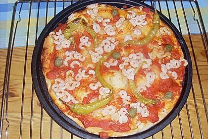 Der akademische Pizzateig 2