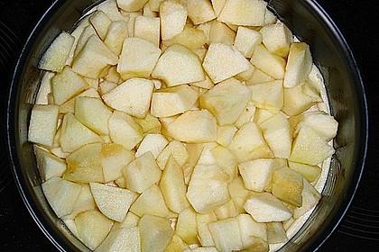 Apfelkuchen mit Rührteig und Streuseln 9