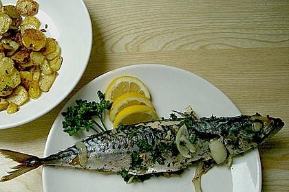 Makrele im Backofen 1