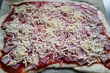 Pizzateig für ein Blech 10
