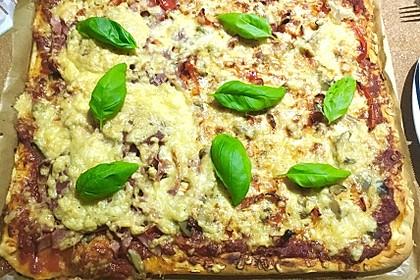 Pizzateig für ein Blech 5