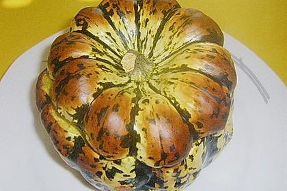 Gorgonzola - Kürbis 12