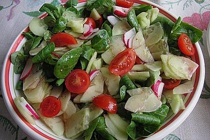 Gemischter Feldsalat mit Himbeeressig - Dressing 9