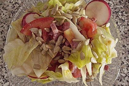 Gemischter Feldsalat mit Himbeeressig - Dressing 29