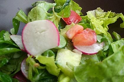 Gemischter Feldsalat mit Himbeeressig - Dressing 30