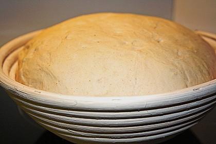 Brot 13