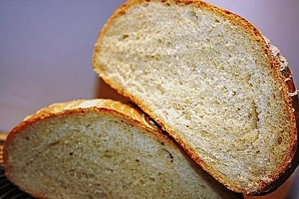Brot 15