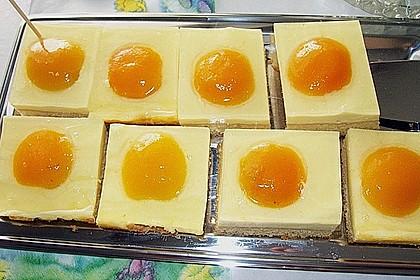 Aprikosenkuchen / Spiegeleierkuchen 3