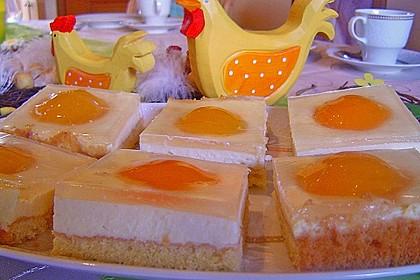 Aprikosenkuchen / Spiegeleierkuchen 2