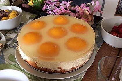 Aprikosenkuchen / Spiegeleierkuchen 4