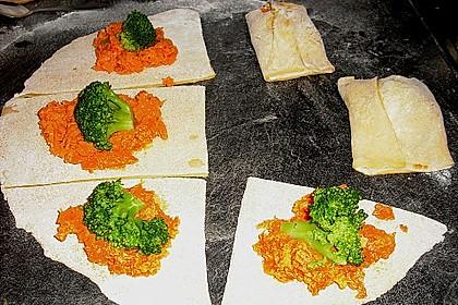 Nudel - Gemüse - Röllchen 3