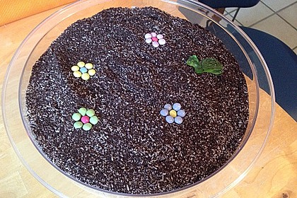 Blumenerde 43