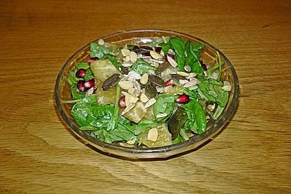 Farbenfreudiger Granatapfel - Orangen - Feldsalat 13