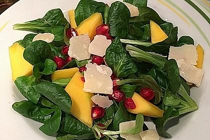 Farbenfreudiger Granatapfel - Orangen - Feldsalat 1