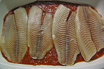 Überbackene Fischfilets in einer Kräuter - Tomatensoße 15