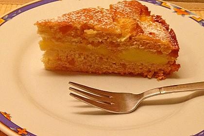 Apfelkuchen mit Puddingcreme 16