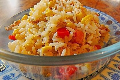 Reis - Thunfisch - Salat 14