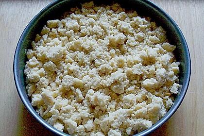 Apfelkuchen mit Vanillecreme und Streusel 3